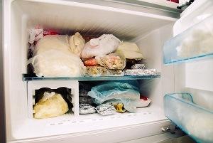 Opened refrigerators deepfreeze. It's full.