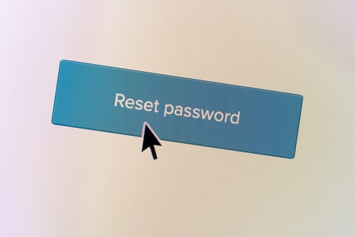"""Closeup of a """"Reset Password"""" web button with a mouse arrow on a computer screen."""
